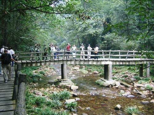 張家界国家森林公園