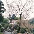 中国・蘇州「拙政園」