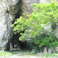 岩屋口の洞窟