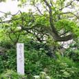 安寿塚(鹿の浦)