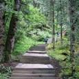 牟尼溝・二道海「森林迷宮」